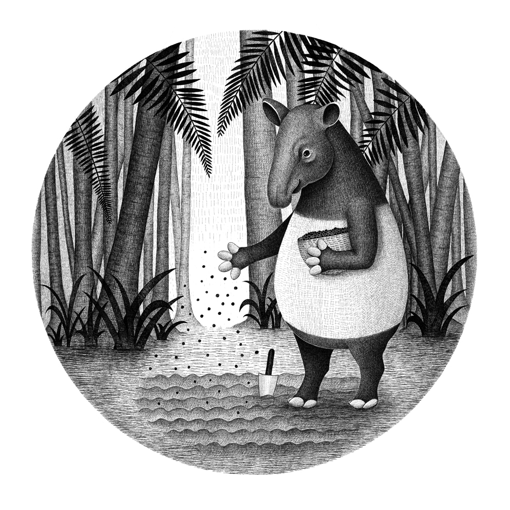Tapirs are gardeners of forest
