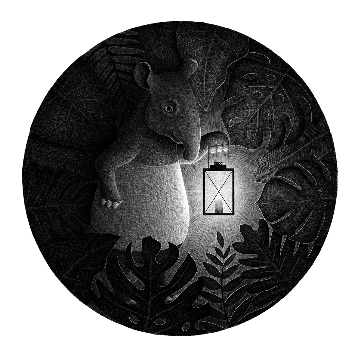 Tapir with candle in the night jungle