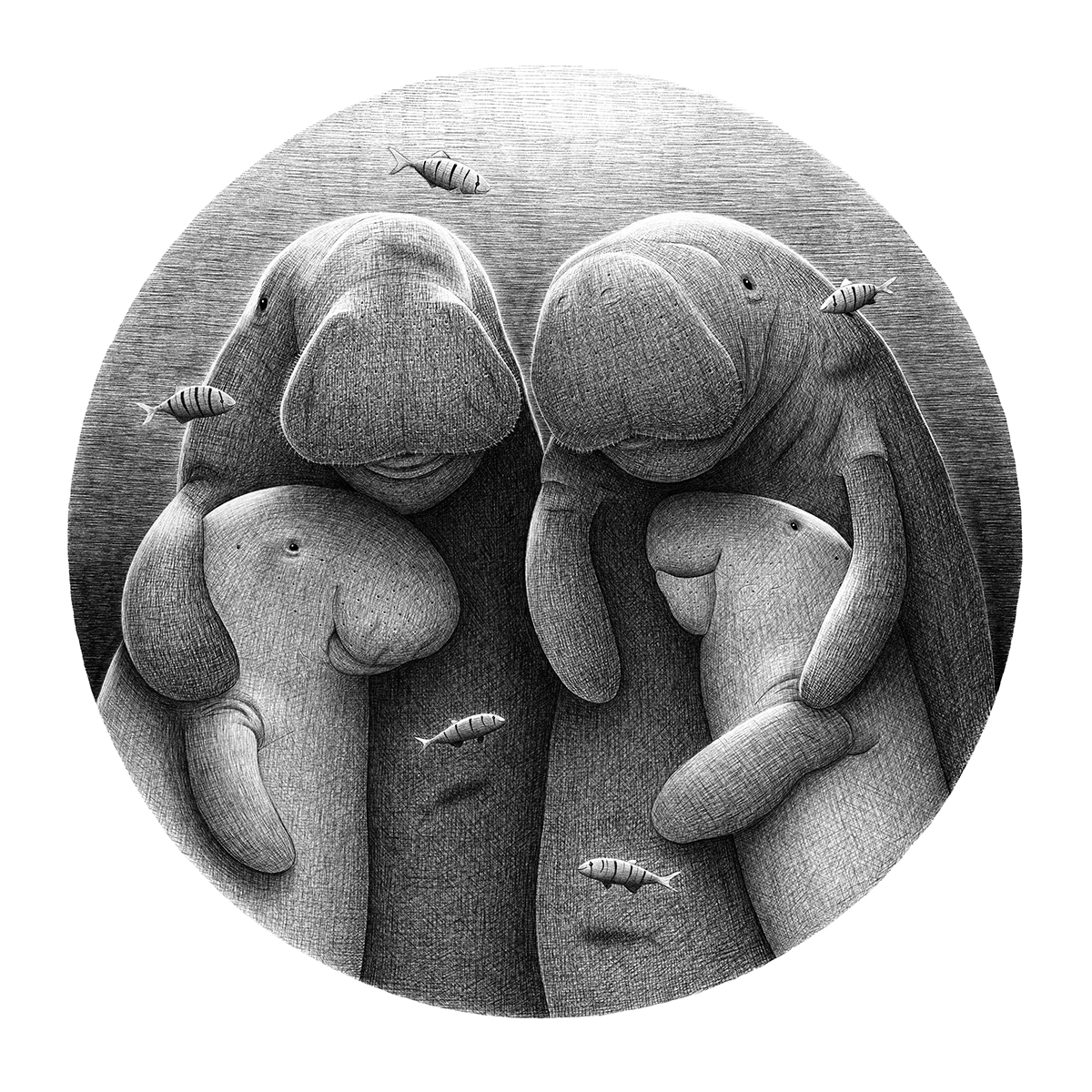Dugong Family black and white illustration by drawingeggen