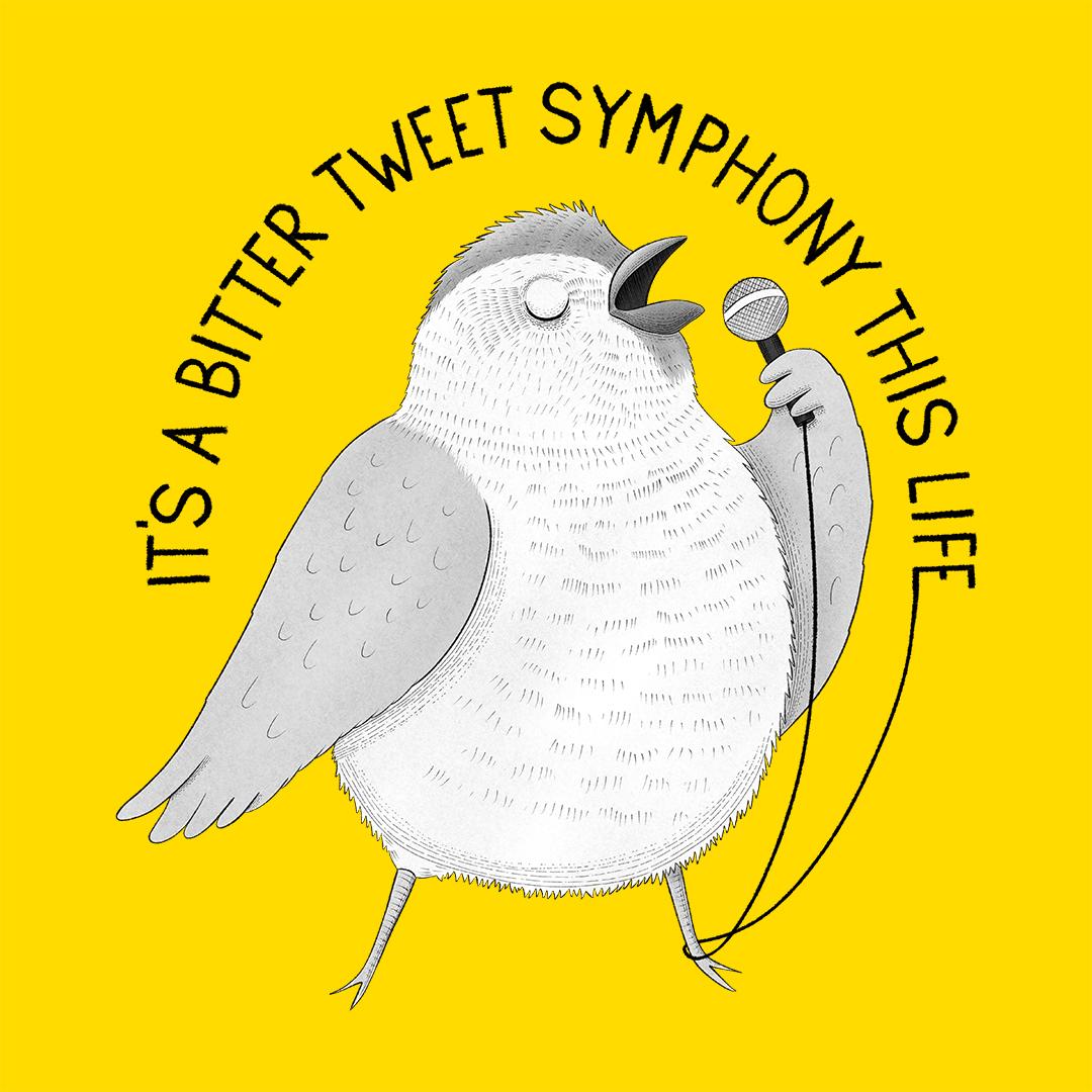 sparrow the verve animal karaoke illustration lucia eggenhoffer